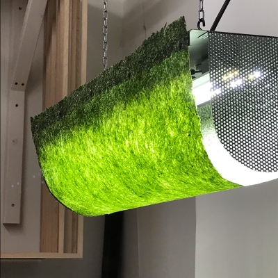 Algae Lamp (prototype model #1), 70 x 15 x 20 cm.