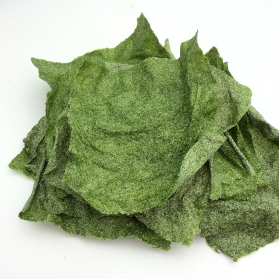Algae Paper sheets made of green seaweed (Ulva Armoricana).