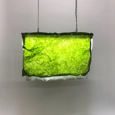 Algae Lamp (prototype model #2), 70 x 50 cm.