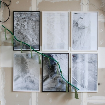 Algae Paper branches on silk-screened posters, 210 x 200 cm.